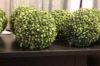 10 Faux Boxwood Balls Topiaries Pomanders For Centerpieces Green