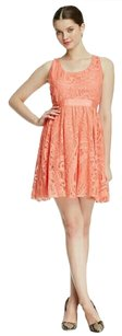 Alice + Olivia short dress Coral Lace Fit & Flare on Tradesy