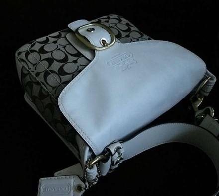 Coach Dooney Bourke Louis Vuitton Channel Rare Shoulder Bag