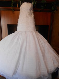 Enzoani Brand New Geneviere Wedding Dress