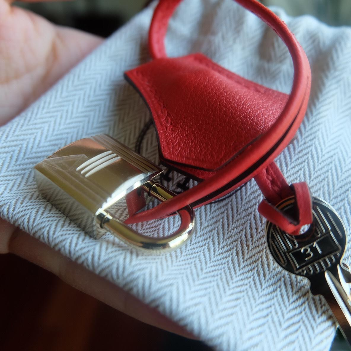Rough Tomato Evercolor Calfskin In Gold Plated Hardware ...