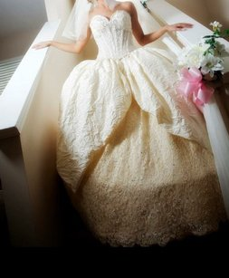 Ines Di Santo Ivory Lace and Silk Wedding Dress Size 2 (XS)