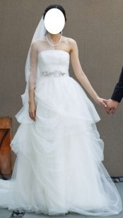 Vera Wang Ball Gown With Corded Lace Bodice And Wedding Dress