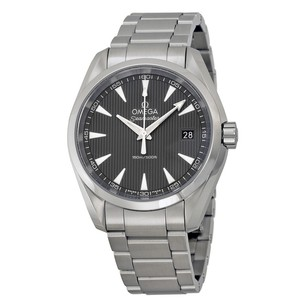 Omega Seamaster Aqua Terra Grey Dial Men's Watch 231.10.39.60.06.001
