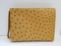 Other Italy Genuine Ostrich Brown Clutch