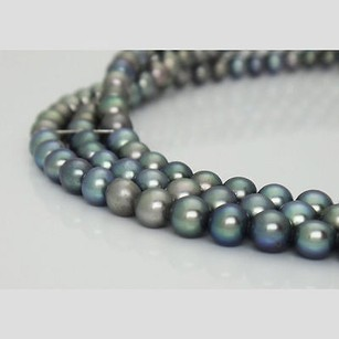 Exquisite Green Grey Freshwater Pearls 14k Triple Strand Choker Necklace N109