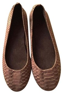 Other Snake Python brown Flats