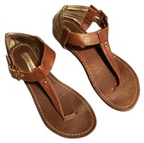 Steve Madden And Gold Gold Thong Brown Sandals